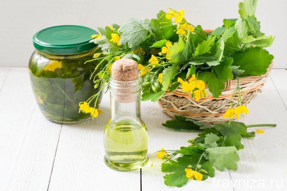 фитотерапия, масло, сок, отвар чистотела