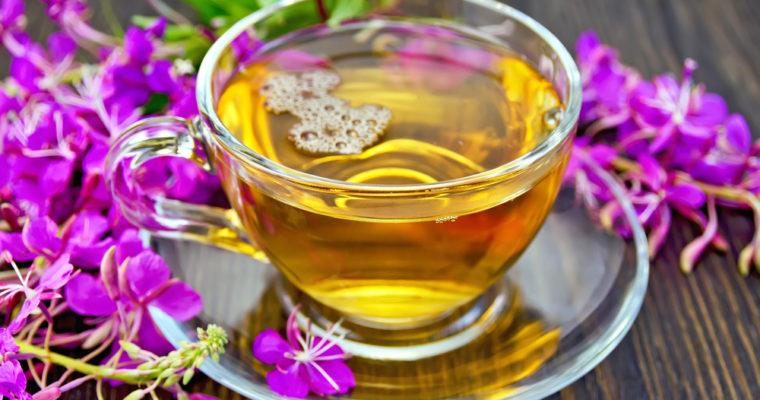Иван-чай ( Кипрей узколистный)
