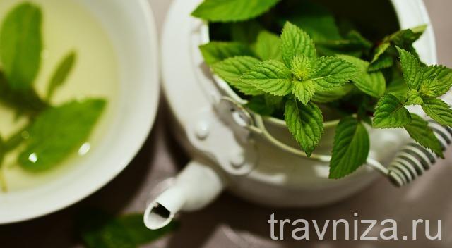 Мята и чай