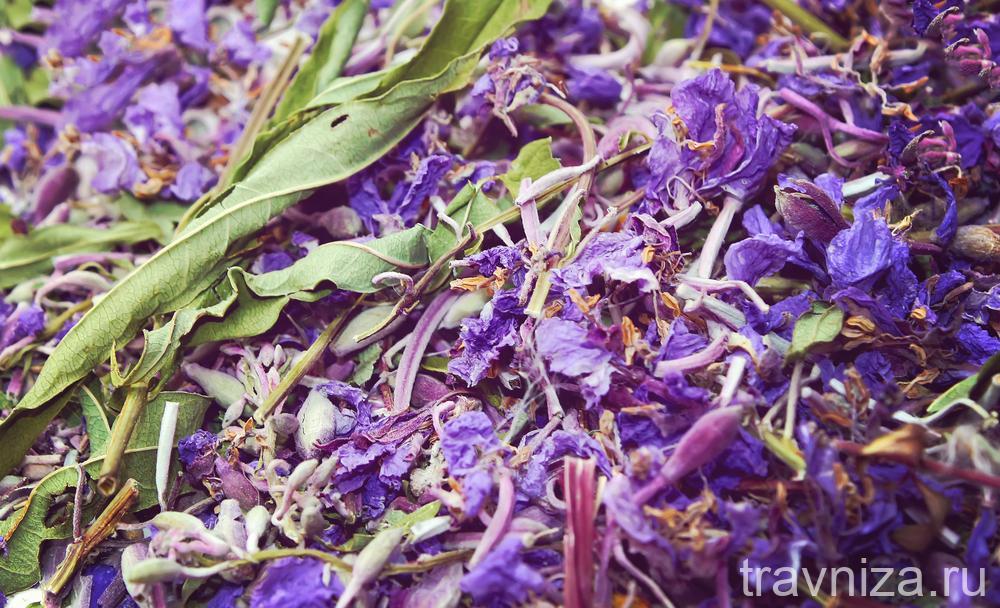 сушеные листья иван-чая