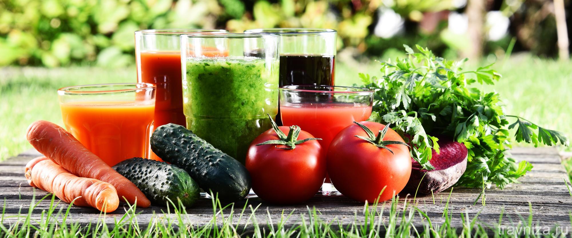овощи и фрукты с огорода для соколечения
