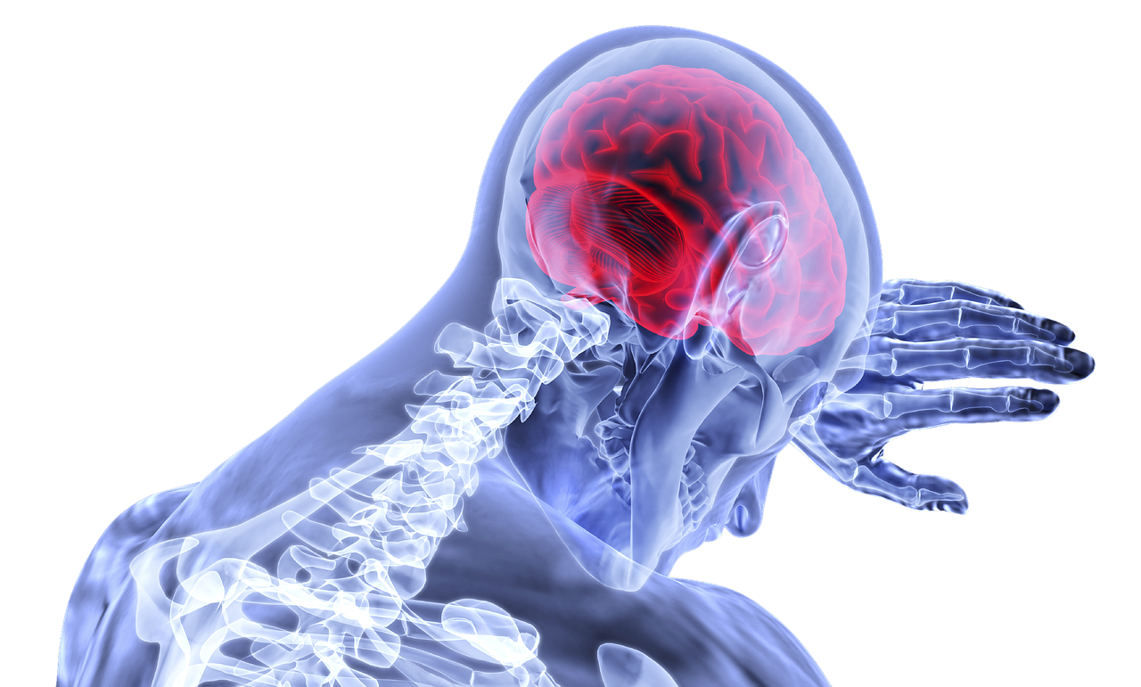 укрепление сосудов и капилляров головного мозга