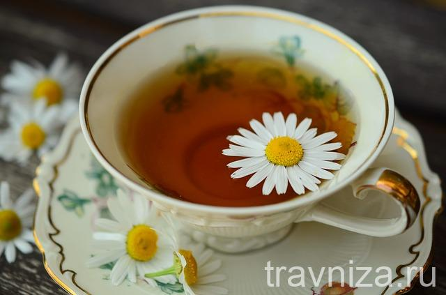 ромашковый чай от похмелья