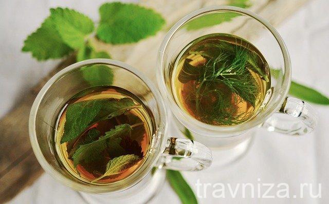 травяные чая для очищения легких