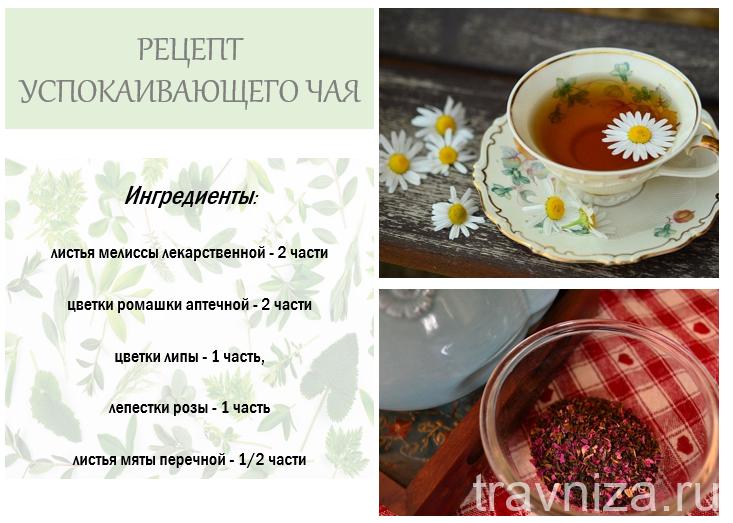 рецепт успокаивающего чая