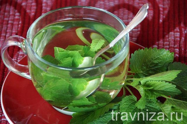 чай с листьями мелиссы