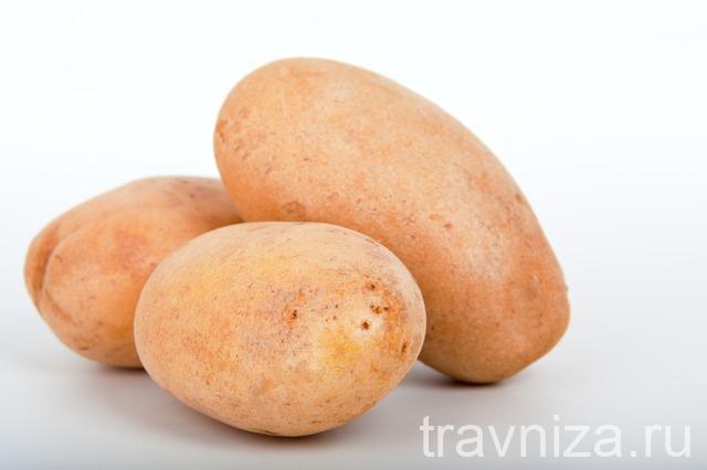 лечение соком картофеля желудка