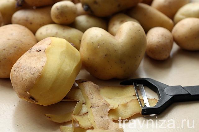 сок картофеля для лечения язвы желудка рецепт