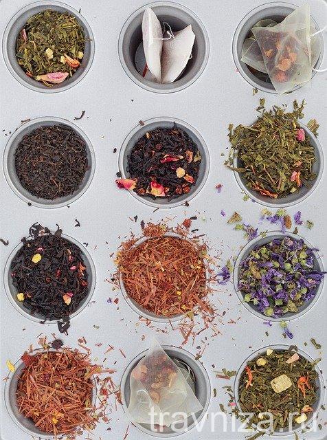 какие бывают травы для чая