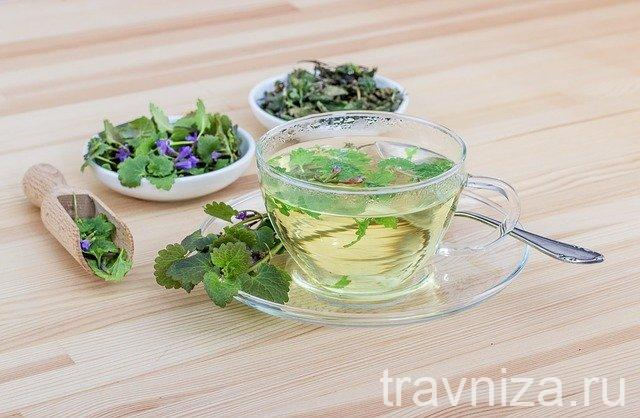 Какие травы можно смешивать между собой для чая
