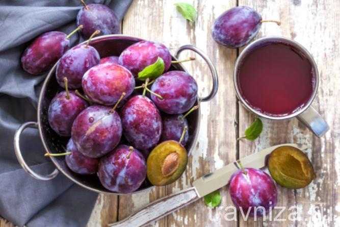 Сливовый сок — польза и противопоказания