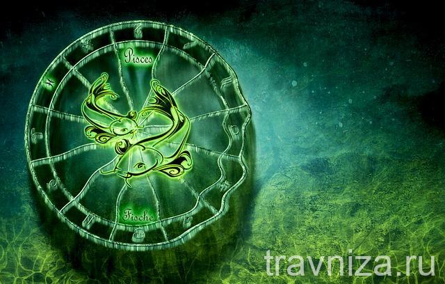 Лекарственные травы для каждого знака Зодиака